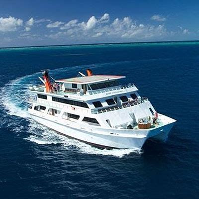 re vip top deck club liveaboard dive and snorkel trip ctic