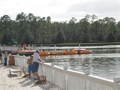 paddle boats orlando florida paddle boats for rental picture of marriott s grande