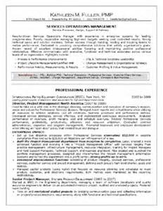 Professional resume templates on samples executive resumes