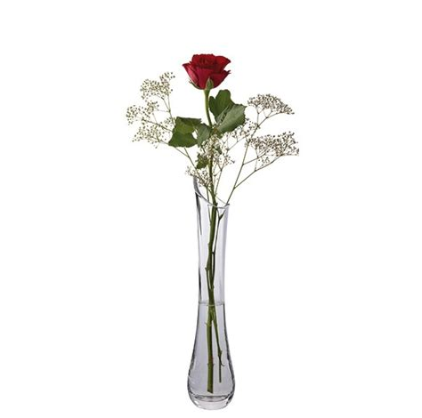 How To Put Roses In A Vase by Florabundance Single Vase Dartington