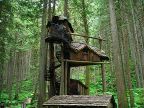 tree houses pictures of tree houses and play houses from around the