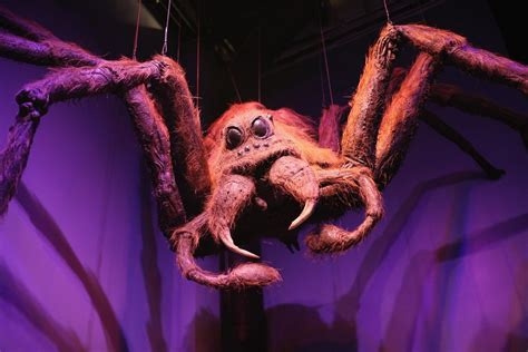 film giant spiders 28 things you never knew about how harry potter movies