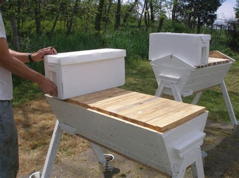 top bar hive entrance location 17 best images about beekeeping on pinterest entrance
