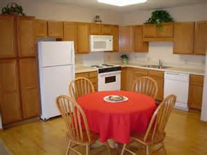 Kitchen Theme Ideas For Apartments Trendy Kitchen Ideas Apartment By Apartment Kitchen Ideas