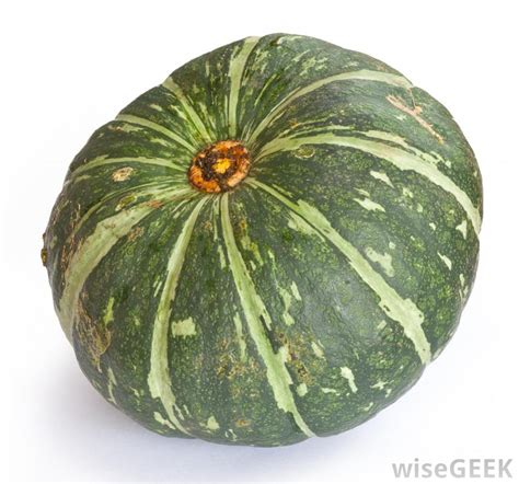 what is squash with pictures