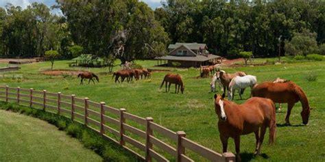 1 Paket Sho Kuda de ranch wisata ala koboy amerika jogja tour dan paket wisata jogja ll jotuindonesia