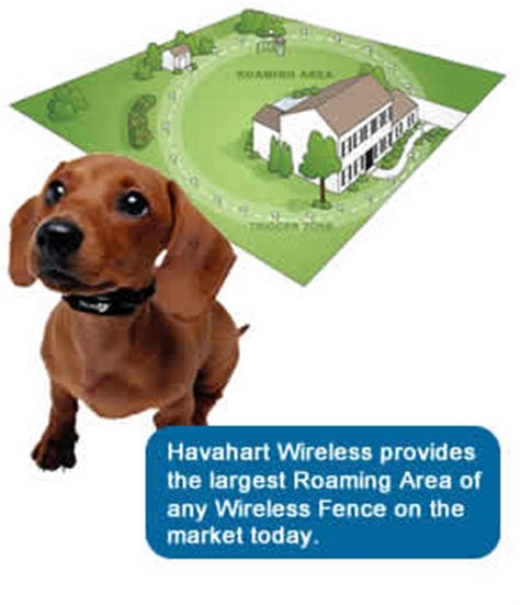 wireless fence for small dogs havahart wireless 5134gs2 radial shape 2 wireless fence for small wireless fence