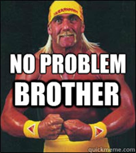 No Problem Meme - no problem brother hulk hogan quickmeme