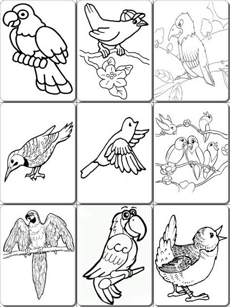 9 11 Coloring Pages Pdf by Birds Coloring Pages Pdf Pdf Coloring Pages