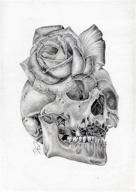 skull rose morph graphite pencil drawing by wazche on