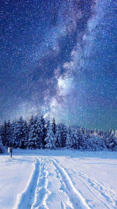 wallpaper forest snow winter sky stars night