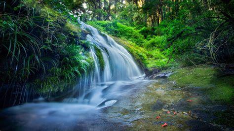 thailand waterfall forest river green grass wallpaper hd