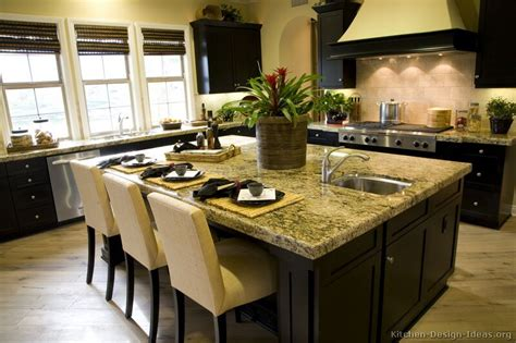 kitchen desing ideas pictures of kitchens traditional black kitchen