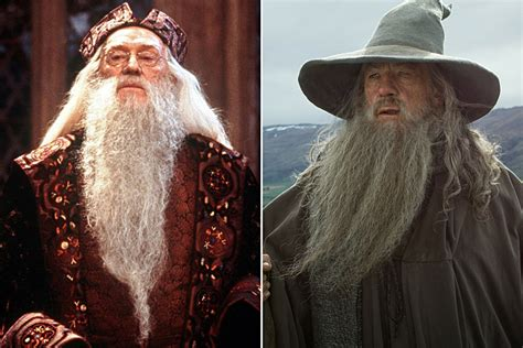 actor who plays gandalf and dumbledore harrypotter the reason ian mckellen turned down the