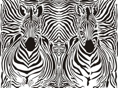 zebra pattern camouflage how the zebra got his stripes science version jane