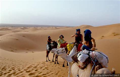 tenda berbera erg chebbi la carovana diretta verso la tenda berbera