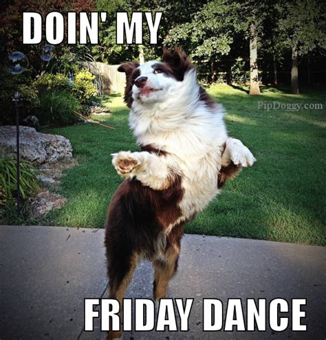 Happy Friday Meme Funny - dog meme friday dance tgif dogs pinterest