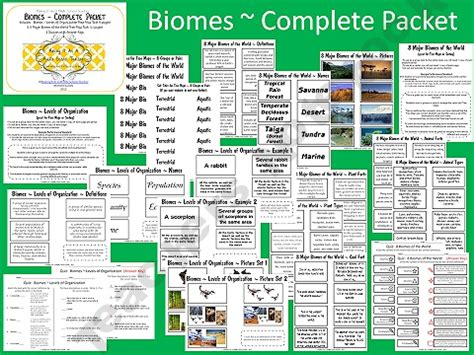 6th grade activities on pinterest 715 pins biomes of the world complete packet 22 pages 6th 8th