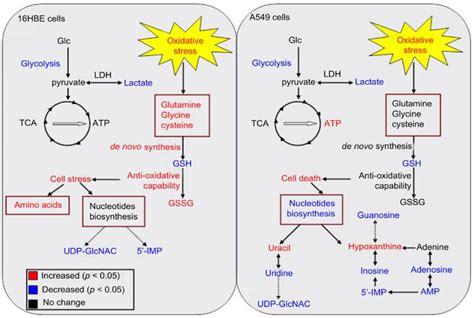 Liang Bai Whitening Serumastanlu Bio Nano 发表文章 国家纳米科学中心