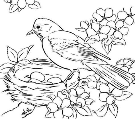 preschool coloring pages birds free coloring pages birds coloring page purse hanger com