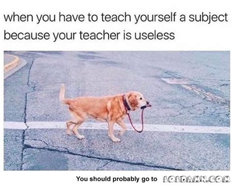 8 Skills You Can Teach Yourself On The by 10 Fresh College Memes 7 Essay Writing Skills
