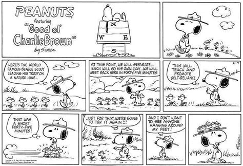Snoopy Woodstock Beagle Scouts By Medicom snoopy e woodstock beagle scout escoteiros vcd bonecos