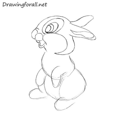 how to a rabbit how to draw a rabbit for drawingforall net