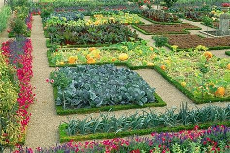 Raised Garden Layout Ideas Raised Vegetable Garden Plans Vegetable Garden Layout Ideas Raised Bed Vegetable Garden Layout