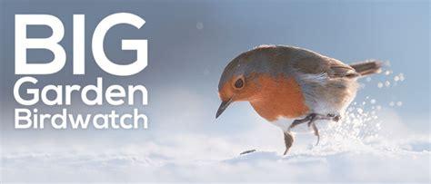 Rspb Big Garden Birdwatch Start Twitching by The Big Garden Birdwatch