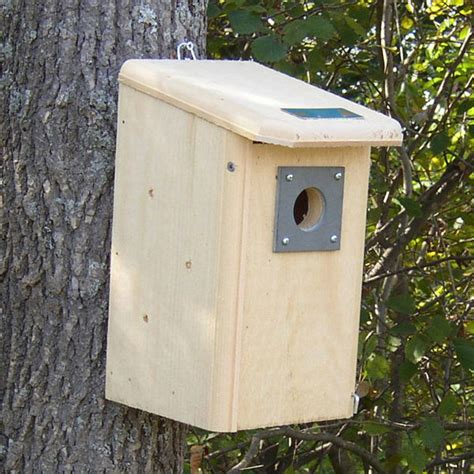 wooden bird houses bird house designs yard envy