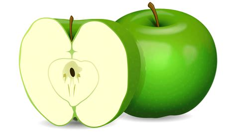 fruit clipart 45 free fruits clipart fruits name