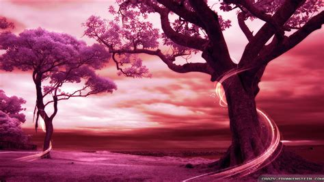 wallpaper romantic pink beautiful pink tree wallpaper www pixshark com images
