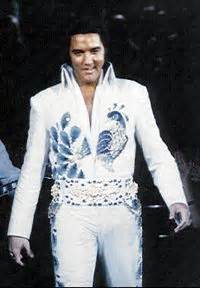 1000 ideas about elvis costume on