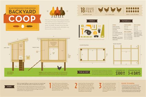 how to build a chicken coop gardengal bevy