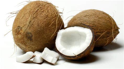 kokosnuss le was die bestandteile der kokosnuss bewirken b z berlin