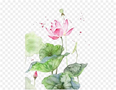 watercolor painting watercolour flowers art chinese