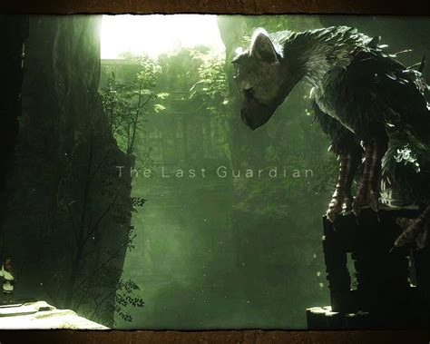 the last guardian an the last guardian e3 2015 trailer ps4