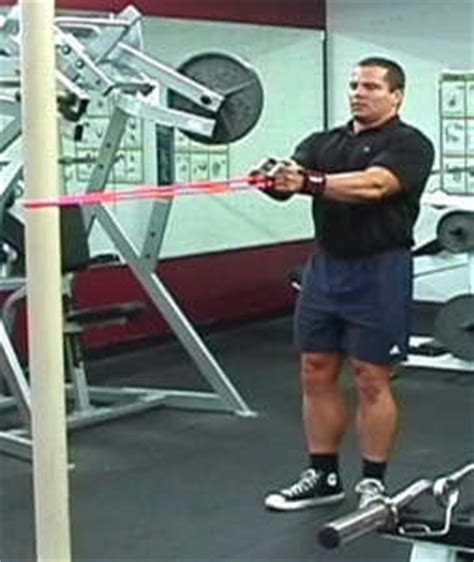 bench press assistance exercises increasing your bench press with assistance exercises