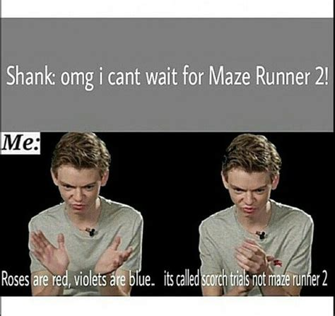 Maze Runner Memes - the maze runner maze runner memes showing 1 9 of 9