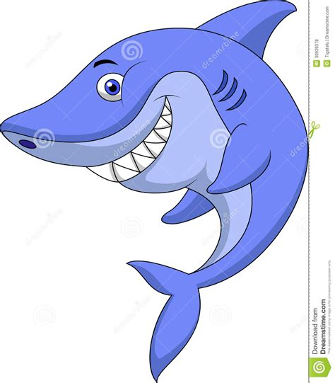 baby shark cartoon cute baby shark cartoon