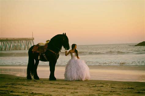 caballo frisian en sesion fotografica de quinceanera