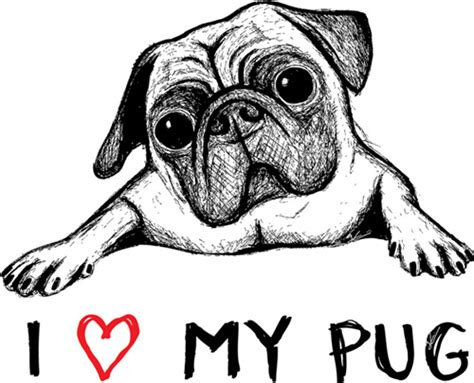 where can i buy a pug i my pug t shirt jonas claesson