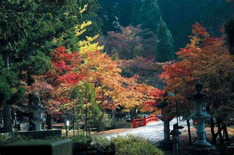 imagenes de jardines japon image gallery jardines de japon
