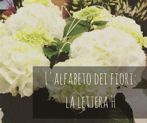 fiori con la lettera e l alfabeto dei fiori la lettera h idee fiorite