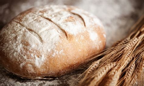 daily bead what lutherans when we talk about daily bread