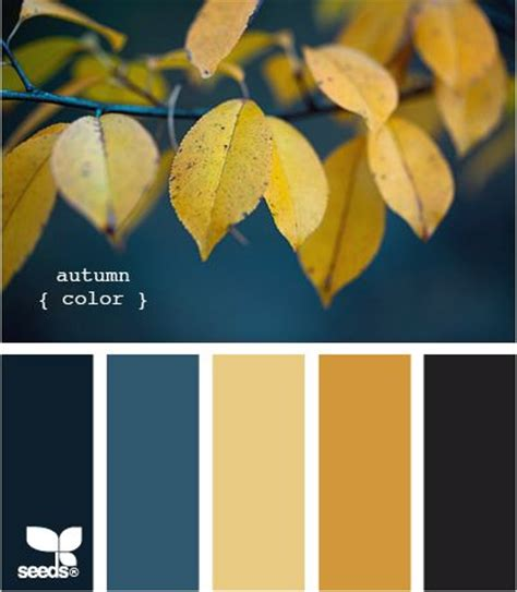 17 best ideas about design seeds on color schemes colour schemes and color pallets