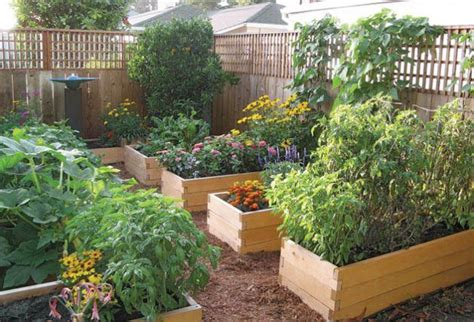 benefits of raised garden beds the benefits of raised garden beds garden pinterest