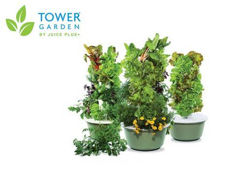aquaponic vertical gardens for smaller homestead indoor