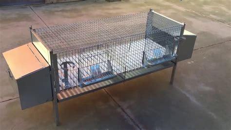 come costruire una gabbia per conigli zoopiro gabbia per conigli fattrici 2 posti