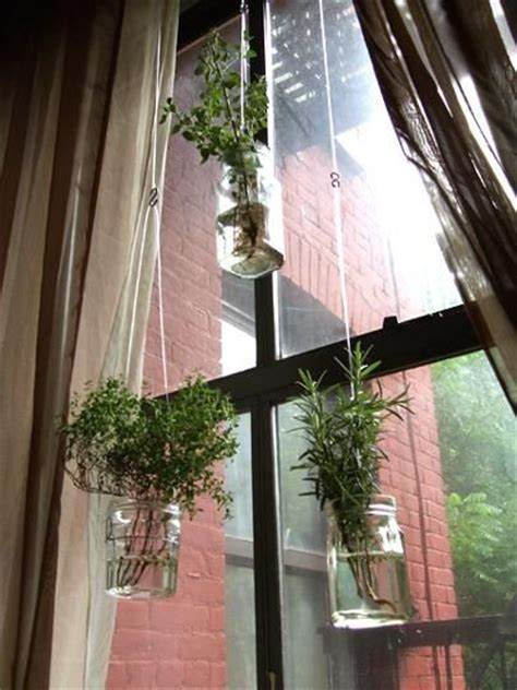 hanging window herb garden diy recycled project floating herb garden diy plants